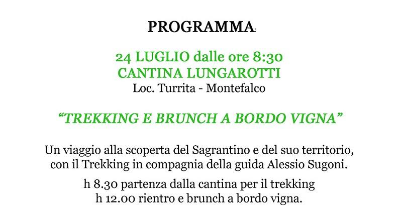 LUNGAROTTI-Domeniche-della-Strada-del-Sagrantino